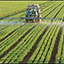 Photo of farm field being fertilized
